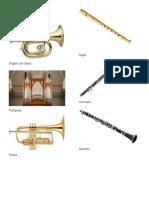 10 Instrumento de Viento, Instrumento de Percusión , Electricos