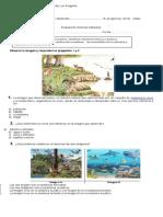 Ecosistema Prueba