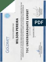 TOC Undergraduate Expert - WIlson Pereira Espinoza