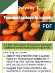 Chapter 1 transport.pptx