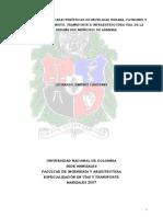 Comparación de Las Características de Movilidad Urbana, Patrones y