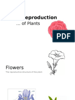 Sexual Reproduction of Plants