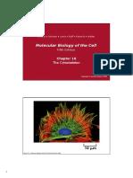 Ch 16_cytoskeleton.pdf