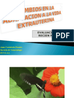 cambiosenlaadaptacionalavidaextrauterina-090328203024-phpapp01