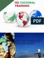 crossculturaltraining-110226080231-phpapp01