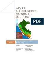LAS 11 ECORREGIONES NATURALES DEL PERU.docx