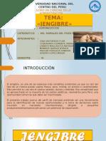 Jengibre-ppts (1)