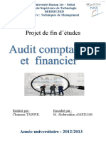 218343742 PFE Final Audit Comptable Et Financier