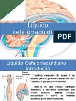 Líquido cefalorraquidianor