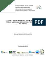 Dissertação Elaine Oliveira