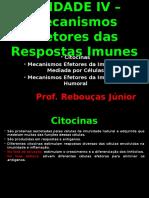 Mecanismos Efetores Das Respostas Imunes