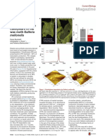 RECICLANDO PLASTICO (1).pdf