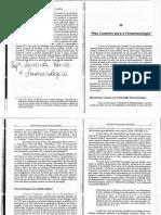 Fenomenologia -Texto 2