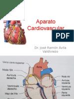 1= Aparato Cardiovascular
