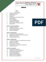 estudio de nivel de preinversion.pdf
