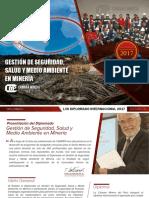 DV122 Gestion de Seguridad Salud y Medio Ambiente en Mineria 2017