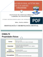 Histologia y Morfologia Dental