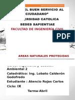AREAS NATURALES PROTEGIDAS.docx