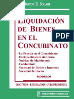 LIQUIDACION DE BIENES EN EL CONCUBINATO - NESTOR SOLARI.pdf
