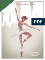 Programa Am 2016 2017 Web
