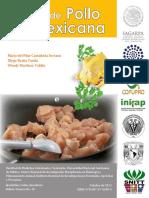 Carne de pollo mexicana.pdf