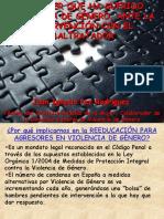Violencia Genero Ficheros Juan Ignacio Paz