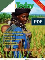 Rice Today Vol. 7, No. 4