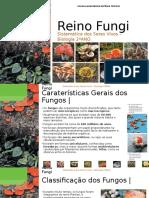 reinofungi-130608061716-phpapp02.pptx