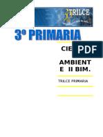 C.A. III BIM