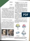 Teorias sobre a origem da vida Primeiro ano.pdf