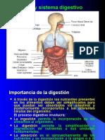 01-Sistema Digestivo Humano.ppt
