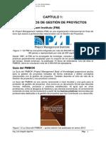 Ms Project2013 - Planificación CEPS (1)