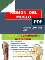 REGION Muslo Final