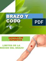 clase4brazoycodo-120329045332-phpapp01