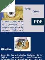 semiologia oritaria