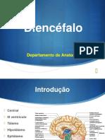 Diencéfalo II