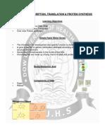 DNA, RNA, TRANSCRIPTION, TRANSLATION & PROTEIN SYNTHESIS.pdf