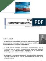 Sindromecompartimentalagudoseminario 150609221816 Lva1 App6891