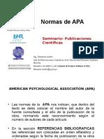 22 Normas de APA (1)
