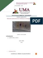 Informe 6 Toxico Final