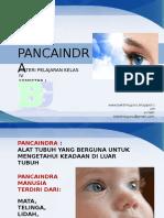 4-pancaindra.ppsx