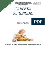 CARPETA GERENCIAL 2