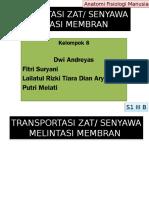 Transportasi Zat Kelompok 8 Tampil