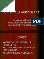 OBOSEALA MUSCULARA.ppt