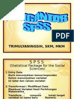 Pengantar SPSS
