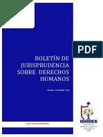 Boletin No 2Aborto y Derechos Humanos