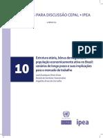 EstruturaEtaria_PeaBrasil.pdf