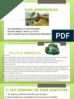 CastilloPech Pedro M15S3 Políticasambientales