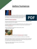10 parásitos humanos.docx