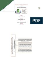 AUDITORIA AMBIENTAL ORGANIZADOR GRAFICO.pdf